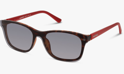 Lunettes de vue In Style ISFM32 HR MATT HAVANA-MATT DARK RED